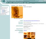 Anterior end of Daphnia