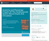 Anatomy and Physiology: Chapter 20 The Cardiovascular System Blood Vessels And Circulation