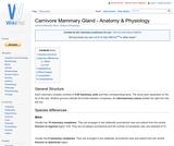 Carnivore Mammary Gland - Anatomy & Physiology