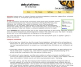 Adaptations: Fit for Survival