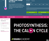 Biology: Photosynthesis:  Calvin Cycle