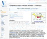 Alimentary System Overview - Anatomy & Physiology