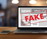 Fact or Fiction: Detecting Fake News on the World Wide Web