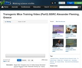 Transgenic Mice Training Video (Part3), BSRC Alexander Fleming, Greece