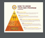 How To Start + Grow Your Bee Program