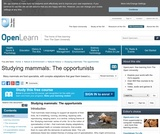 Studying Mammals: the Opportunists