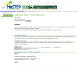 Classify the Trees/Leaves