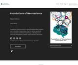 Foundations of Neuroscience