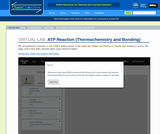 ATP Reaction (Thermochemistry and Bonding)