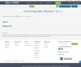 Unit Honey Bee- Module 1-3