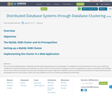 Distributed Database Systems through Database Clustering