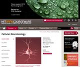 Cellular Neurobiology, Spring 2012