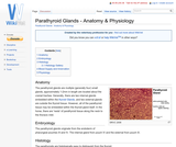 Parathyroid Glands - Anatomy & Physiology