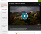 Bonheur's Sheep in the Highlands