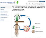 Field Investigations: Biomass Yield and Root Growth in Crops