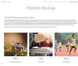 Patterns Biology