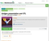 Antigen presentation and CTL