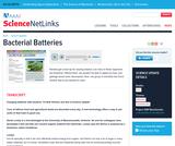 Bacterial Batteries