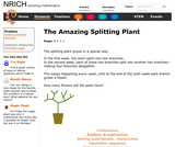 The Amazing Splitting Plant
