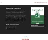 Beginning Excel 2019