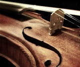 """Violin"" Hyperdoc"