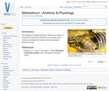 Mediastinum - Anatomy & Physiology