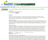 Investigating Decomposition: Processes of a Plant