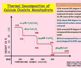 Thermal Decomposition of Calcium Oxalate Monohydrate