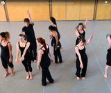 Dancing statistics: explaining the statistical concept of frequency distribution through dance