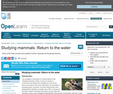 Studying Mammals: Return to the Water