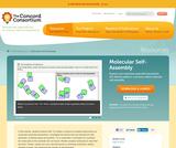 Molecular Self-Assembly