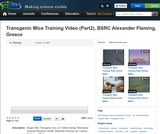 Transgenic Mice Training Video (Part2), BSRC Alexander Fleming, Greece