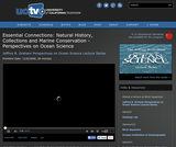 Perspectives on Ocean Science: Essential Connections - Natural History, Collections and Marine Conservation