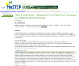 Plant Field Study:  Adaptations of Plants for Survival in Different Environments