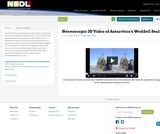 Stereoscopic 3D Video of Antarctica's Weddell Seals