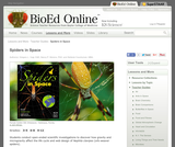 BioEd Online: Spider in Space Mission Page