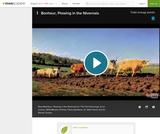 Bonheur's Plowing in the Nivernais