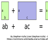 Factoring Polynomials: Common Factor
