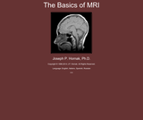 The Basics of MRI