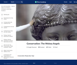 Conservation: The Wolsey Angels