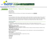 Food Chains: Nature's Restaurant