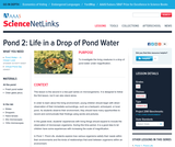 Pond 2: Life in a Drop of Pond Water