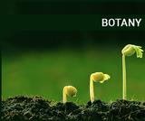 Botany Material