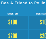 Bee A Friend to Pollinators Factile Game