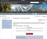 Transformation 1 - Plant Tissue Culture