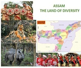 ASSAM,THE LAND OF DIVERSITY