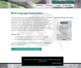 Bird Language Exploration