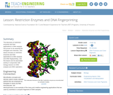 Restriction Enzymes and DNA Fingerprinting