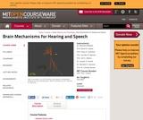 Brain Mechanisms for Hearing and Speech, Fall 2005