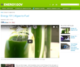 Energy 101: Algae-to-fuels
